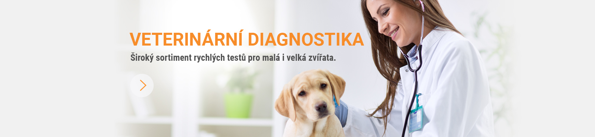 veter-diagnostika_1.jpg